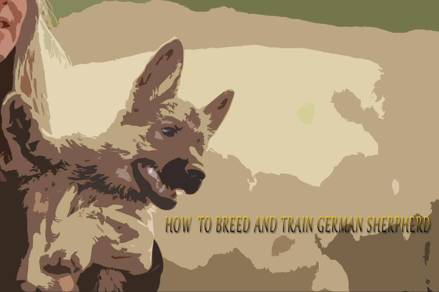 Home Dog Breeds German Shepherd Dog