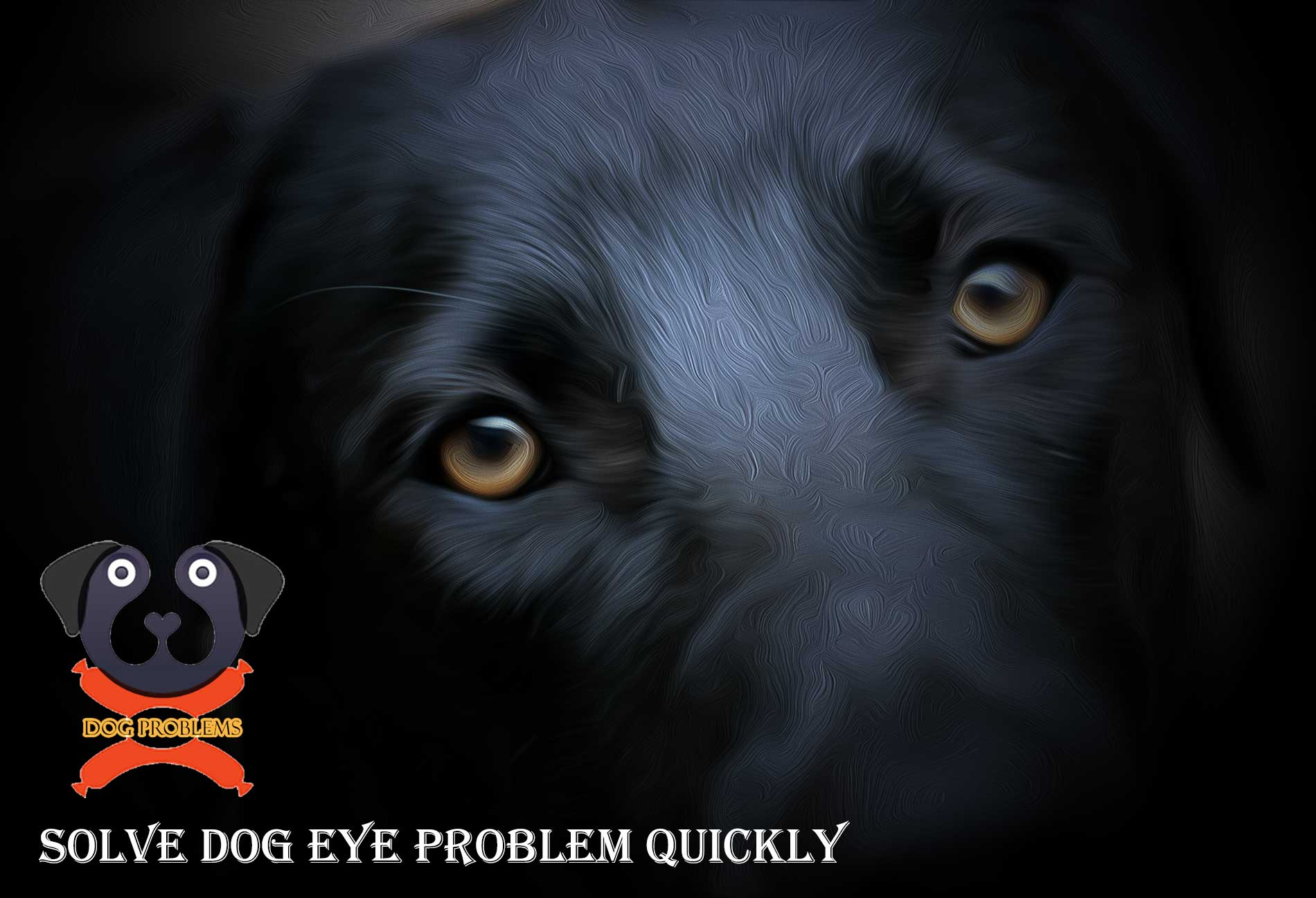 Solve Dog Eye Problem From Now